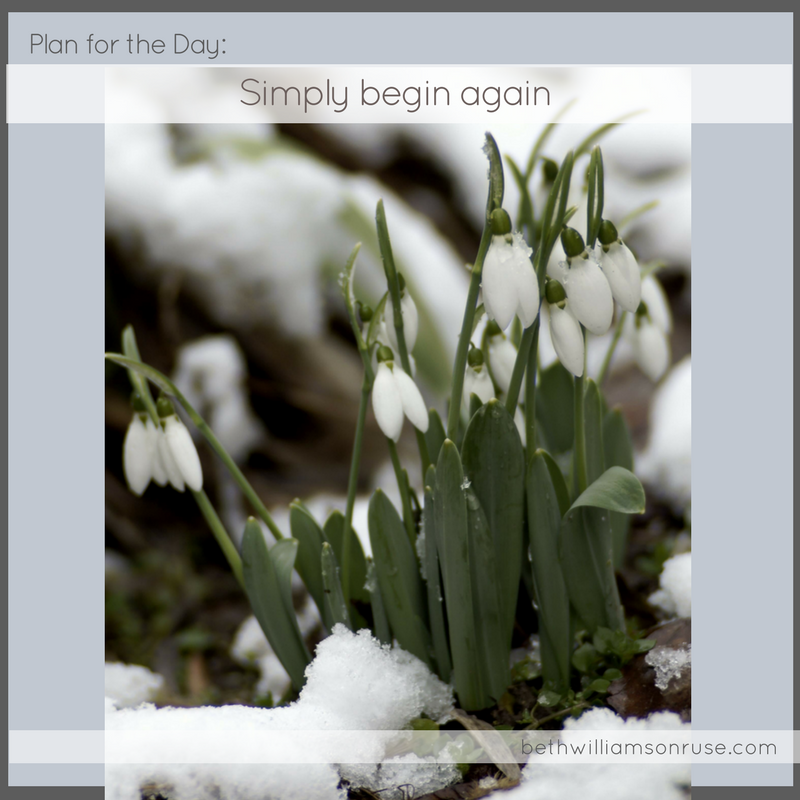 simply begin again, spring renewal