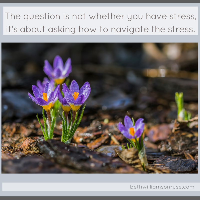The question is not whether you have stress, it is more about asking how to navigate the stress.